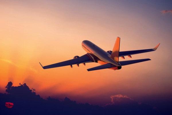 ALCE viajes seguros particulares